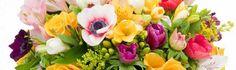 O solutie rapida pentru 1 si 8 martie - buchete de flori online Martie, Lifestyle, Plants, Plant, Planets