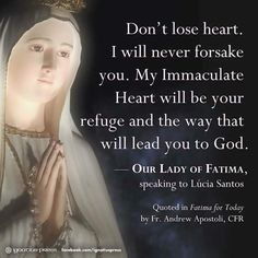 She is the Ark of the New Covenant. Get safely inside the ark by establishing devotion to her immaculate heart and the Five First Saturdays.