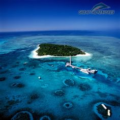Green Island, Great Barrier Reef, Australia.  It was here that I found out that I go into anaphylactic shock when stung by jellyfish! 2nddream vacation