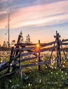 ***Summer dawn (Finland) by Asko Kuittinen sd. Beautiful World, Beautiful Places, Beautiful Pictures, Pictures To Paint, Nature Pictures, Finland Summer, Country Fences, Outdoor Pictures, Lappland