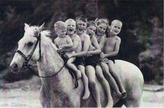 """(1949-1974) Snowman, an older grey plow horse, was rescued off a slaughter bound trailer by Harry DeLeyer, a life-long horse lover/rider/trainer. He instantly recognized Snowman to be one of the kindest and sweetest beginner horses he had ever seen. Little did he know that Snowman would become a jumping champion who'd win the National Horse Show against million dollar horses that had been imported from around the world."" http://sidelinesnews.com/weekly"