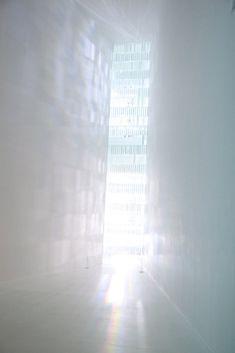 SPECTRUM ( TOKUJIN YOSHIOKA )