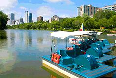 Rent a paddleboat and check out the skyline and shoreline of Lake Michigan.
