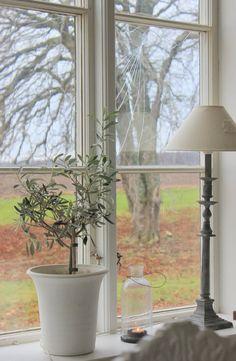 Beautiful view . . . Ana Rosa . . . #windowsill