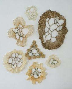 Fiona Stoltze studies in manipulating doilies using thread and wax, referencing natural patterns found in coral reefs Textile Texture, Textile Fiber Art, Textile Artists, Freeform Crochet, Crochet Art, Crocheted Lace, Motifs Organiques, A Level Textiles, Art Du Fil