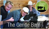 Ellen Degenerous visits the Gentle Barn and blogs about being vegan http://vegan.ellen.warnerbros.com/#
