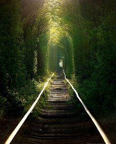 """Tunnel of Love"" in Klevan, Ukraine 