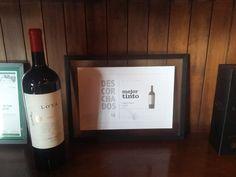 Se você aprecia um bom vinho, conheça algumas das vinhas mais importantes do Chile, a cidade de Santiago, o litoral e a cordilheira em apenas 5 dias.