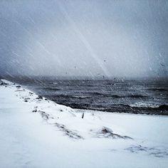 Snowstorm - Stamford, CT    ©mary johanna seibert