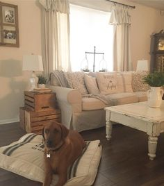 See this Instagram photo by @livin.the.life.of.riley • 132 likes drop cloth curtains, farmhouse living room, ikea slipcover couches, farmhouse decor