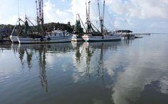 Shem Creek boats, early morning