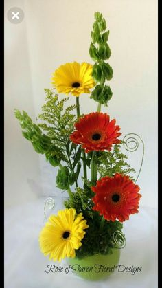 Rose of Sharon Floral Designs Daisy and Bells of Ireland Arrangement – 2019 - Floral Decor Contemporary Flower Arrangements, Creative Flower Arrangements, Church Flower Arrangements, Ikebana Arrangements, Church Flowers, Beautiful Flower Arrangements, Flower Centerpieces, Flower Decorations, Beautiful Flowers