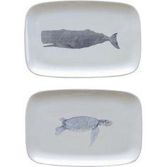 Mason Sea Life Plate (Set of 2) Man Pillow, Creative Co Op, Coastal Homes, Coastal Living, New Wall, Ceramic Plates, Joss And Main, Life Images, Serving Platters