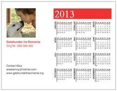 """3 EUR. Donate securely by PayPal at roldaro@gmail.com and mark """"magnet calendar 2013"""""""