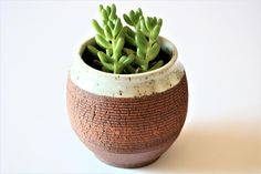 Succulent Planter, Handmade Planter,  Pottery Planter, Ceramic Pot with Crackled Texture, Stoneware Pot, Air Plant Pot, by MasamisCeramics on Etsy