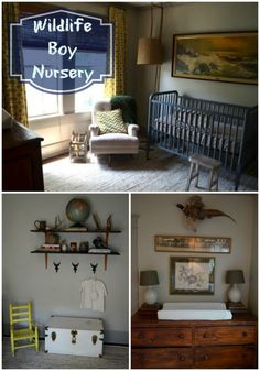 Wildlife Boy Nursery