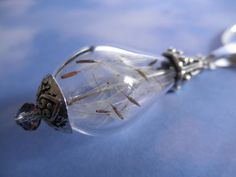Dandelion Seed Terrarium Reliquary Glass by giftforallseasons