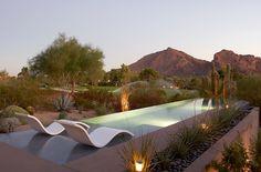 I love these 'wave' seats in an Arizona garden with infinity pool Outdoor Pool Furniture, Garden Furniture, Outdoor Decor, Arizona Pools, Outdoor Spaces, Outdoor Living, Cozy Backyard, Desert Backyard, Arizona Gardening