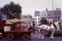 Aston Quay Dublin 1967 - horses and drays were common then - a Dublin I knew. Dublin Map, Dublin Hotels, Visit Dublin, Dublin City, Dublin Ireland, Old Pictures, Old Photos, Irish Free State, Tourist Office
