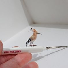 RESERVED for Kelly ~ Hoopoe miniature scale 1:12 Dollhouse Miniature Realistic…