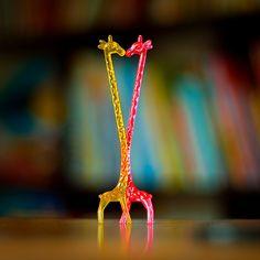 giraffe Giraffe Crafts, Giraffe Art, Cute Giraffe, Elephant, Cocktail Drinks, Cocktails, Animals Beautiful, Cute Animals, Beautiful Images