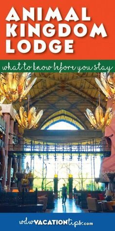 Everything you need to know about the Animal Kingdom Lodge before you decide to stay there!