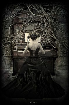 pigtailsandcombatboots:  bronz-age:  cloggo:  Drucilla found that her underground Organ Loft had solved the problem of complaints from her neighbours about her playing, but the tree roots were becoming a confounded nuisance.