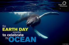 Don't Forget the Ocean on Earth Day -  By carrying a reusable bag, you can ensure a plastic bag never reaches a beach. Eat responsibly and locally caught seafood to satisfy your sushi craving. When you're filling your boat's gas tank, fill up only 90 percent of it. This will reduce the risk of spills from overfilling.     Carry a reusable mug.     Print double-sided documents.     Use cold water to reduce energy      Use a drying rack for your clothes.     Use cloth napkins.