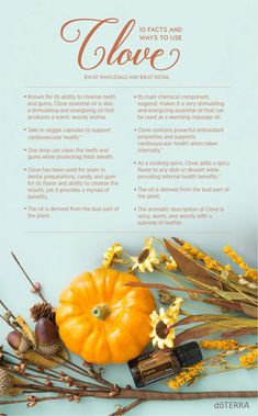 Clove essential oil uses and benefits. 10 ways to use Doterra Clove essential oil. Ways to use Clove oil. How to use Clove oil. Find out how to get your own oils here Clove Oil Uses, Clove Oil Benefits, Clove Essential Oil, Essential Oil Uses, Good Massage, Doterra Essential Oils, Diffuser Blends, Osho, Herbalism