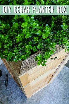 This simple DIY Cedar Box Tutorial will teach you how to make a beautiful tall planter box that adds instant curb appeal to your home! Tall Planter Boxes, Tall Outdoor Planters, Cedar Planter Box, Plastic Planter Boxes, Diy Planter Box, Large Planters, Wooden Planters, Cedar Box, Cedar Fence Posts