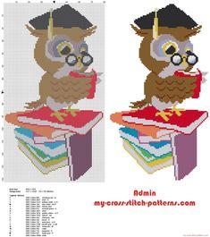 Graduation owl with books cross stitch pattern idea