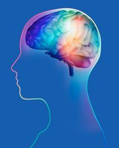 Neurociencia - Estimulacion temprana