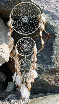 the wolf den, Generations dream catcher