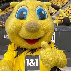 Pikachu, Disney Characters, Fictional Characters, Dogs, Borussia Dortmund, Pet Dogs, Doggies, Fantasy Characters