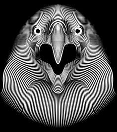 Eagle by Patrick Seymour, via Behance