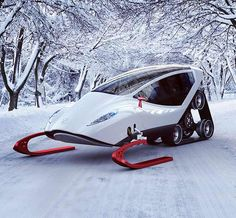 Snow Crawler - This sleek snowmobile has a totally enclosed, cozy cabin to keep icicles from forming on your eyelashes as you go dashing through the snow.