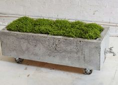 Easy to DIY concrete planter