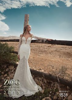 awesome Stupendous Wedding Dresses By Zoog Bridal Studio For 2015, #2015 #Bridal #dresses #Studio #Stupendous #Wedding #Zoog,