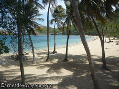 Plage de Guadeloupe Fall Wallpaper, Nature Wallpaper, Waterfall, Desktop, To Go, Wallpapers, Beach, Places, Outdoor