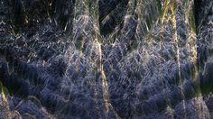 AMNON OWED  : Eternalism on Vimeo