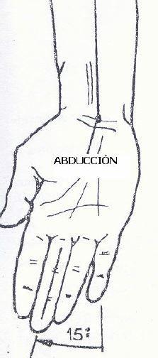 - Rotación y circunducción: la rotación consiste en hacer
