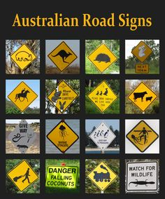 27 Problems That Prove Australia Is Batshit Insane