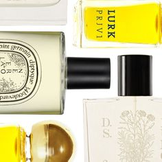 Fall Fragrance Updates For Your Personality | The Zoe Report