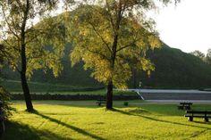 Lasek Wolski w Krakowie - świetne miejsce na odpoczynek
