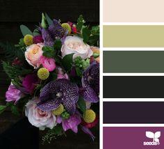 12.02.15 flora palette