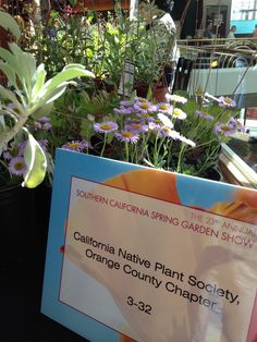 The display of the CA Native Plant Society