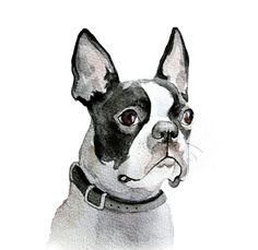 13x19 Custom Pets Portrait original watercolor painting customized commision dog cat animal pet lover large illustration drawing on Etsy, $135.00