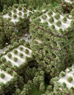 Чтобы построить дом на дереве обычно нужны гвозди или шурупы, молоток и деревянные доски. Однако архитектурная фирма Penda (Пекин, Китай), разработала проект экологичного дома на дереве, для строительства которого всё это совершенно не нужно. А нужны только верёвки и стволы Читать далее   Многоэтажный «дом на дереве» из бамбука и без единого гвоздя→