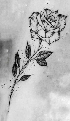 200 Fotos de tatuagens femininas no braço para se inspirar – Fotos e Tatuagens - Flower Tattoo Designs 44 einzigartige Tattoo-Ideen für Frauen Tattoo Design Drawings, Cool Art Drawings, Pencil Art Drawings, Art Drawings Sketches, Tattoo Sketches, Drawing Art, Rose Drawings, Rose Drawing Tattoo, Unique Drawings