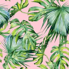 Pink Jungle Wallpaper mural wallpaper